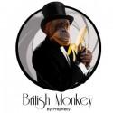 Concentré British Monkey
