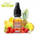 Concentré Tropik Thunder par A&L (10ml)