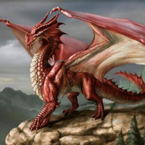 Tabac du dragon rouge