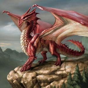 Une touche de fraicheur de dragonne