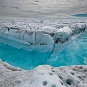 Menthe ULTRA glaciale !