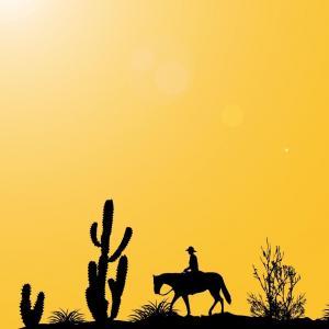 Sweet Cactus