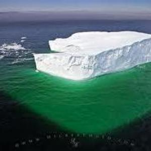 iceberg menthe