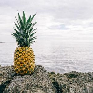Yaourt ananas