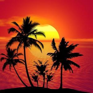 Jus de Fruits Tropical