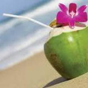 fresh tutti coco